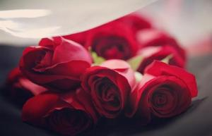 Merahnya Bunga Mawar